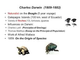 evolution origin of life ppt video online  8 charles darwin