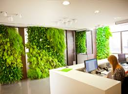green wall office. Oxygenated Office Green Wall