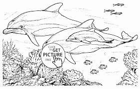 Small Picture Realistic Dolphins coloring page for kids animal coloring pages
