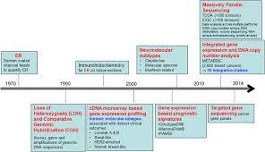 Molecular classification of breast cancer