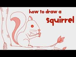 Small Picture How to Draw a Squirrel Step by Step Guide Learn Drawing for