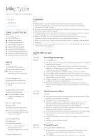 Program Manager Resume Examples Project Manager Core Competencies Resume Examples
