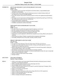 Project Implementation Manager Resume Samples Velvet Jobs