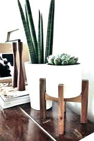 mid century modern plants crate and barrel plant stand landscaping barr