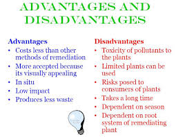 advantages and disadvantages biology online advantages and disadvantages