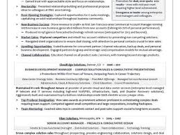 Resume Writing Services Minneapolis Resume Service Nyc Resume