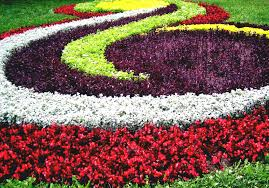 Small Picture Perennial Flower Garden Design Cadagu Idea Small Ideas Home And