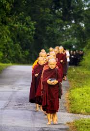 Free Images : flower, spring, red, autumn, monk, religion, child, clothing,  dress, temple, tradition, costume, theravada monks, sangha in line,  pindacara, pindapata, alms round, buddhist monks, sangha on road, monk's  life 2592x3735 - -