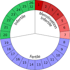 Period Cycle Chart 24 Explicit How To Chart Your Period