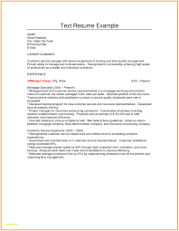 Resume Text Format Best Of Plain Text Resume Sample Plain Text Resume Sample Luxury 24 1