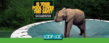 loop loc covers. Wonderful Loc Are You Still A Little Skeptical About Loop Loc Covers Hear It From  Locu0027s Very Own Bubbles The Elephant With Covers E