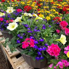 Reviews Cascade Shadows Plant & Garden (Gardener) in Utah |  TrustReviewers.com