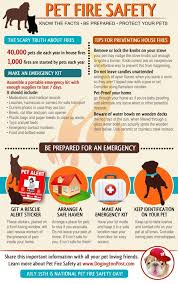 best home safety images safety tips bureaus and  help keep your pets safe from the risk of fire these safety tips