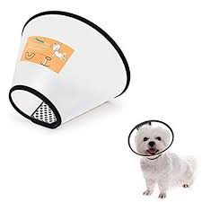 Lemon Pet Anti Bite Lick Pet Dog Cat Cone Wound Protective Collar Adjustable Neck Comfy Plastic Soft Clear 8 Sizes To Select