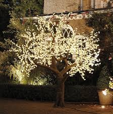 Wedding Tree Lights Illuminated Decorative Led Tree Led Tree Enchanted Tree