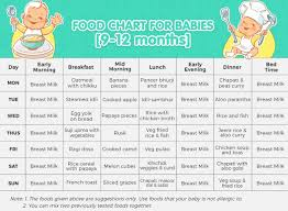 Meal Plan For Baby 9 12 Months Old Tinystep