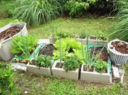 best soil for vegetable garden. best soil for a vegetable garden raised bed s