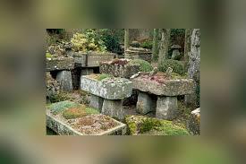 Design A Rock How To Create A Rock Garden Mnn Mother Nature Network
