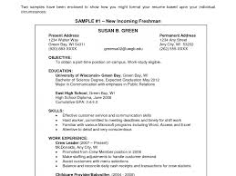 How To Make Objective In Resume Objective For Resume Customer Service Amazing Objectives Badak 20
