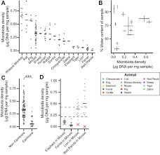 Hsd Density Conversion Chart Gut Microbiota Density Influences Host Physiology And Is