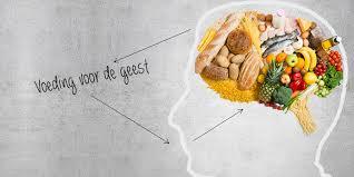Hersenen en voeding