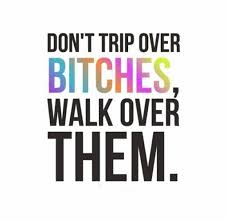 Quotes About Bitches