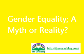 gender equality a myth or reality the essay blog