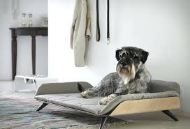modern dog furniture. The Daybed Is A Modern Dog Bed With Plenty Of Style Designer Has Created Furniture