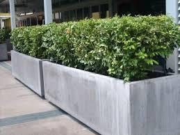 concrete planter boxes contemporary concrete planters contemporary concrete planters and sculpture by lightweight concrete planter boxes concrete planter