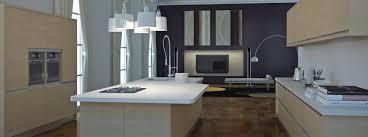 Kitchen Cabinet Company New Italian Kitchen Designs Renovation