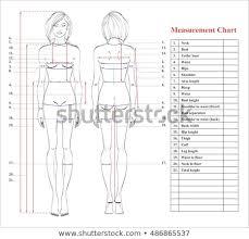 Female Body Measurements Chart Magdalene Project Org
