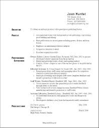 Great Resume Format Fascinating Great Resume Format Letter Resume Directory