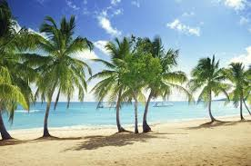 Image result for island day