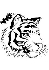 Dessins Colorier Coloriage Tigre Imprimer Vos Crayons