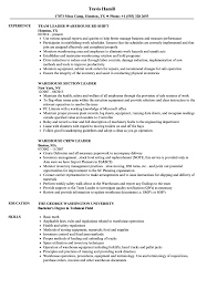 Group Leader Resume Example Warehouse Leader Resume Samples Velvet Jobs 46