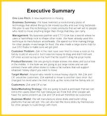 Format For An Executive Summary Business Plan Executive Summary Sample Format Example
