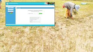 ตรวจสอบสถานะ เกษตรกร ง่ายนิดเดียว ลงทะเบียน รอรับเงินเยียวยา 15,000