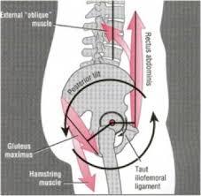 posterior tilt