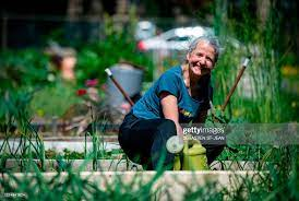 Christine Lamothe works in a community garden after a two month... News  Photo - Getty Images