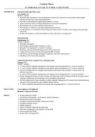 Courier Resume Messenger Resume Samples Velvet Jobs