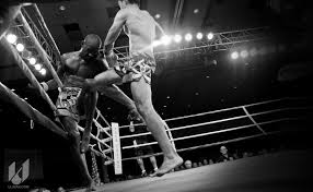 boxing ring wallpapers group 64