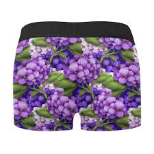 Interestprint Mens Boxer Briefs Purple Hydrangea Xs 3xl