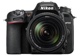 Best Dslrs Of 2019 Cameras For Beginner Intermediate