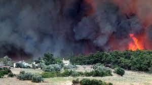 Investigation Started on Manavgat Forest Fire