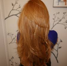 Strawberry Blonde Hair My Epic Journey