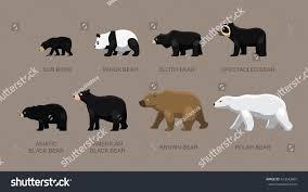 grolar bear size grolar bear size nornas info