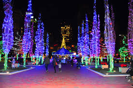 Columbus Zoo Lights Pictures The 8 Best Holiday Light Displays In Columbus