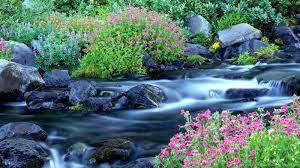 Free Beautiful Nature Wallpapers – HD ...