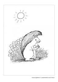Zeg Kleine Eekhoorn Kinderboek Natuur