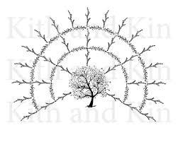 Fan Family Tree Charts Templates Genealogy Fan Chart Template 4 Generations Blank